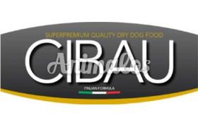 Cibau|סיבאו