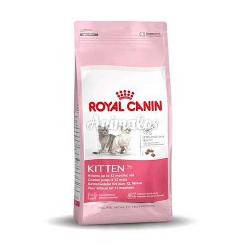 רויאל קנין חתול גור 4 ק''ג Royal Canin