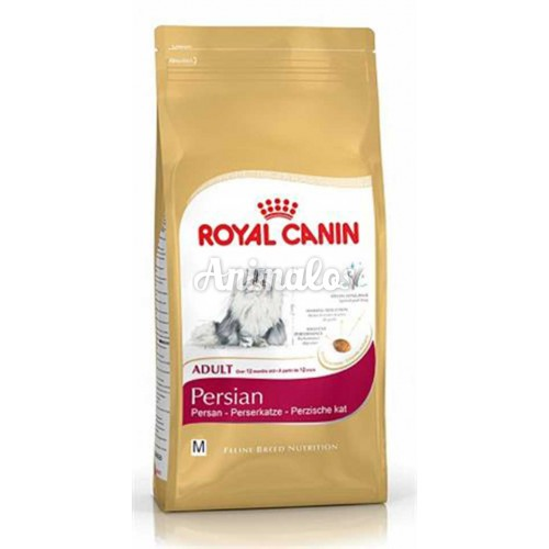 רויאל קנין חתול פרסי 4 ק''ג Royal Canin