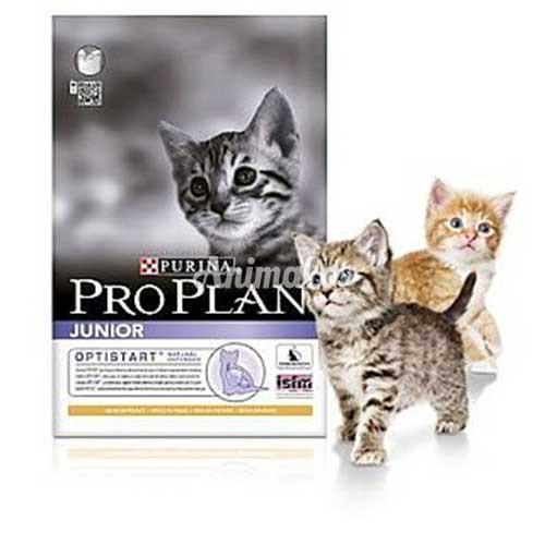 פרו פלאן חתול גור 3 ק''ג PRO PLAN