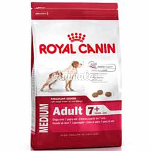 רויאל קנין מידיום 7+ במשקל 15 ק''ג Royal Canin