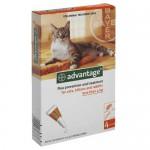 """אמפולות אדוונטג' לחתול עד 4 ק""""ג"""
