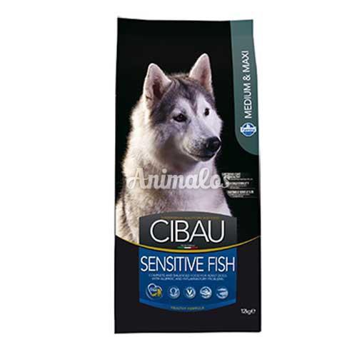 סיבאו בוגר סנסטיב דגים 12 ק''ג CIBAU