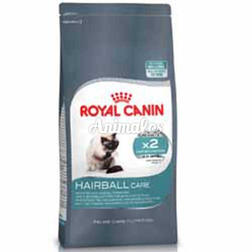 רויאל קנין חתול היירבול 4 קג Royal Canin