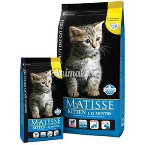 מאטיס מזון לחתולים גורים 1.5 ק''ג