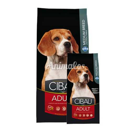סיבאו בוגר לכלב בינוני 2.5 ק''ג CIBAU