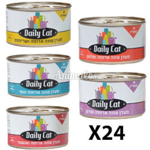 מבצע!!! מגש מעדן דיילי קט 24 יחידות של 80 גרם /Daily Cat
