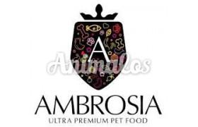 אמברוסיה|Ambrosia