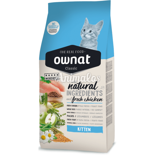 """אוונט קלאסיק מזון לגורי חתולים 1.5 ק""""ג"""
