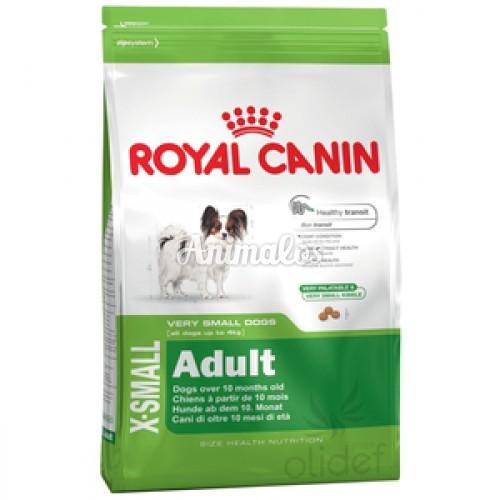 רויאל קנין בוגר אקסטרה סמול לכלבים זעירים 1.5 ק''ג Royal ca
